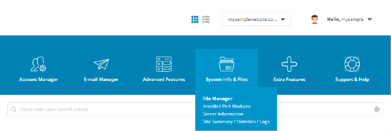 DirectAdmin Control Panel of your webpage hosting