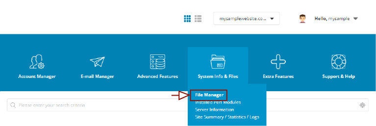 DirectAdmin Control Panel -> File Manager